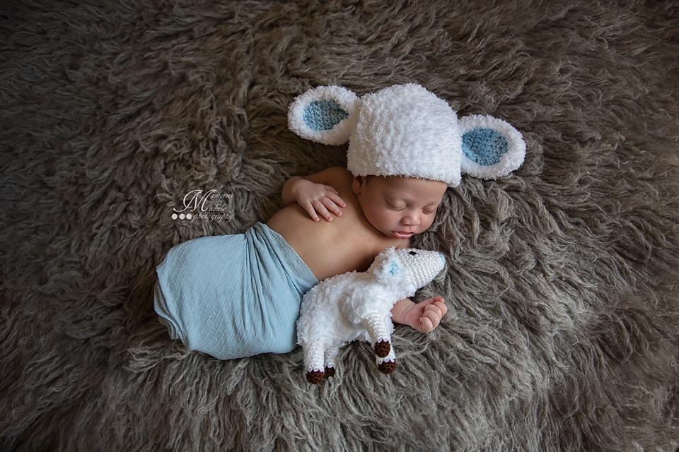 Free crochet newborn lamb hat with matching plush photo prop