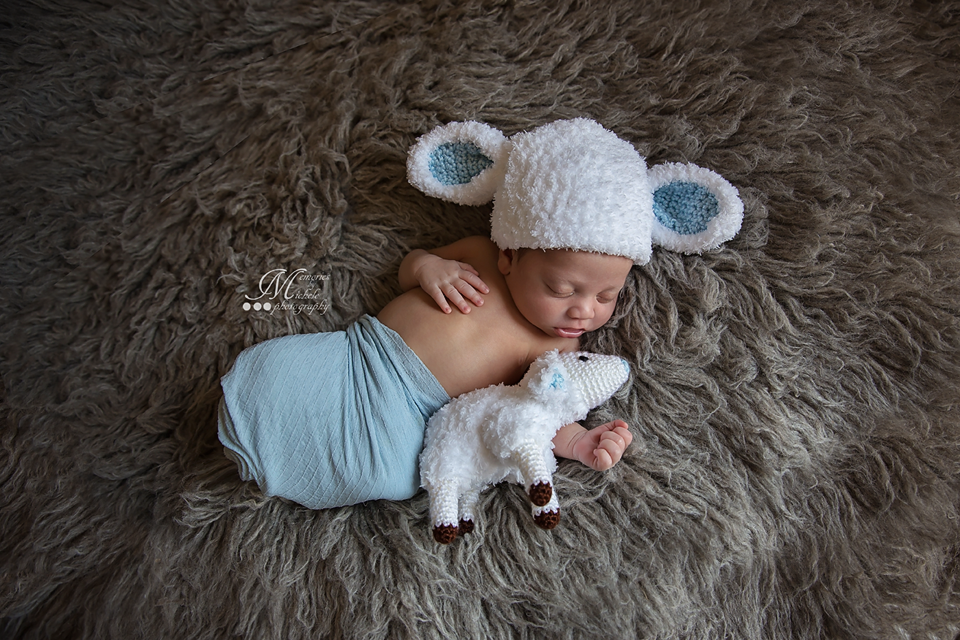f49f3ceabcc4 Free Newborn Lamb Hat with Matching Plush Toy
